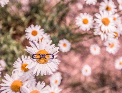 5 plugins pour ajouter des auteurs aux articles WordPress